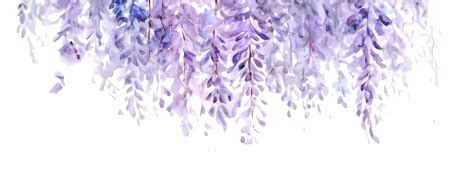 image transparent wisteria 1 converted png animal jam