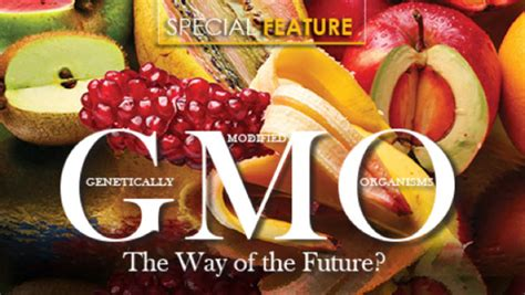 The Way Of The Future by Gmo S The Way Of The Future