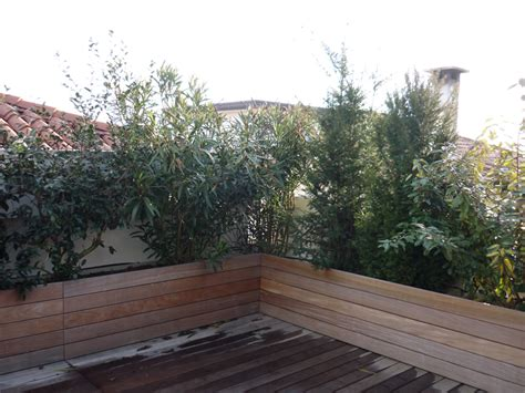 vasche per piante da terrazzo le nostre realizzazioni vivai pio loco renato