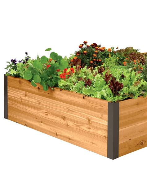 Pinterest Raised Garden Beds - 24 best images about critter proof gardens on pinterest gardens raised beds and raised garden
