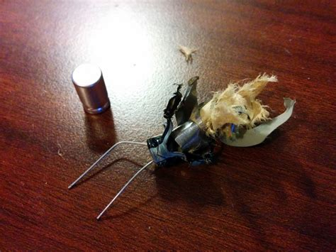 blown electrolytic capacitor load capacitor exploded why electrical engineering stack exchange