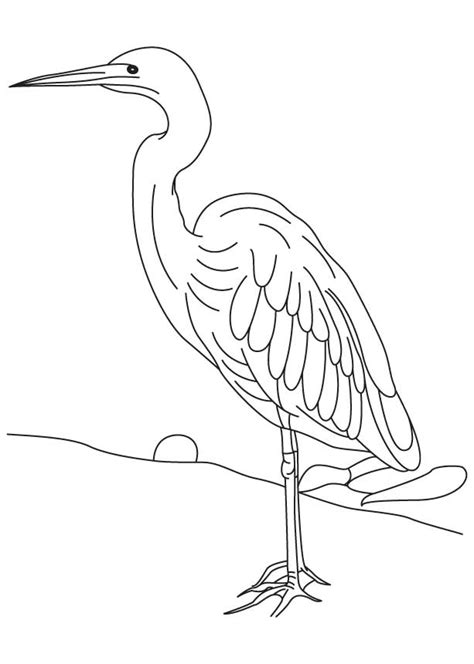 white heron colouring pages