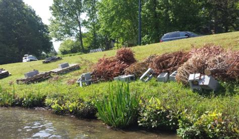 www aquascape recycling christmas trees to improve ponds aquascape