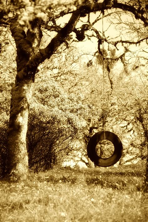 tire swing photography old tire swing sepia stock image image of swing trees