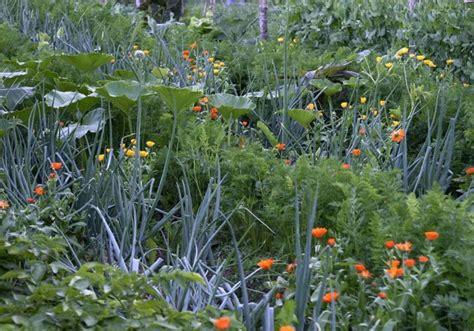 Kupka Garten by Biologisch G 228 Rtnern F 252 R Die Schmetterlinge Bl 252 Hendes