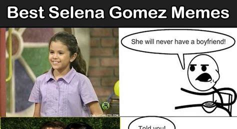 Selena Gomez Memes - loaf cat funniest cat memes of all time