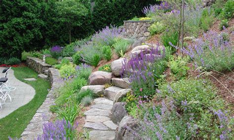 Backyard Hillside Landscaping Ideas by Front Amp Back Yard Landscaping Services Amp Ideals In