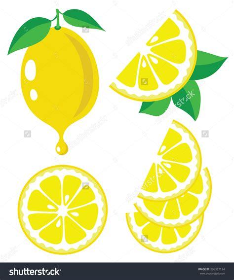 lemon drop clip art sliced lemon clip art 63