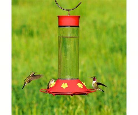 Wide Hummingbird Feeder hummingbird feeders pagosa feed nursery