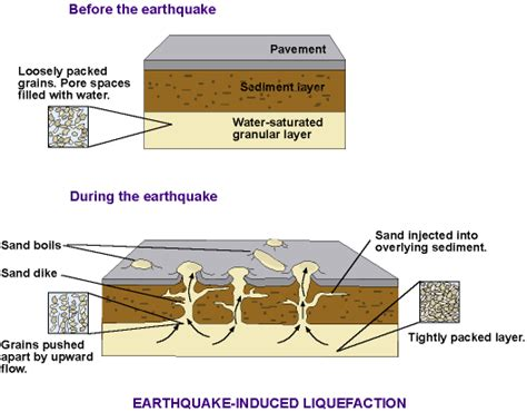 soil dynamics and foundation modeling offshore and earthquake engineering risk engineering books what is soil liquefaction causes and importance of soil