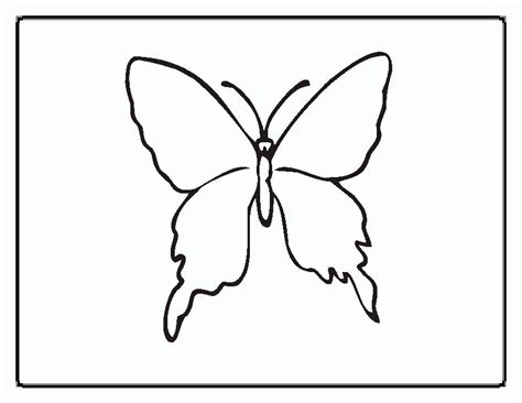butterfly coloring pages kindergarten butterfly coloring pages preschool coloring home