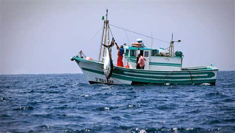 Pesca De Bajura Que Significa la historia con sus errores 3 186 eso curso 2013 14