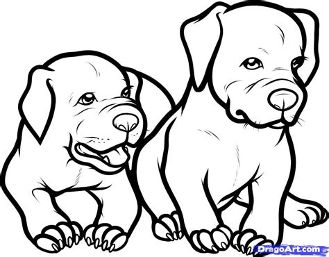 black and white coloring pages of dogs pitbull dog black and white drawings only pitbull dogs