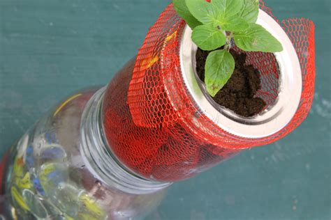 self watering how to make a self watering mason jar planter 9 steps