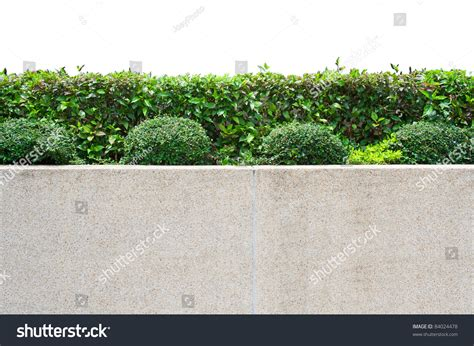 white garden walls exterior decoration garden on gravel concrete stock photo