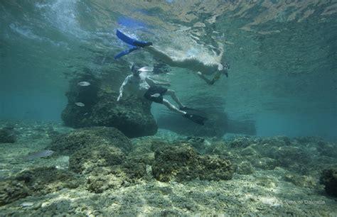 sea kayaking split brela cove adventure dalmatia