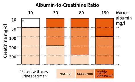 s creatinine test microalbumin urine test results pictures to pin on