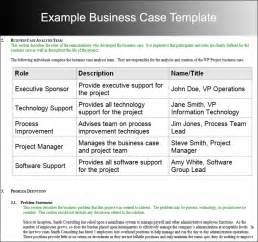 Basic Business Case Template Business Case Template Word Selimtd