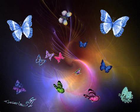 wallpaper free butterfly fantasy butterfly backgrounds free download hd colorful