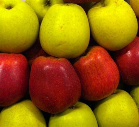 alimenti acido urico alimenti ottimi contro l acido urico 8 passi uncome
