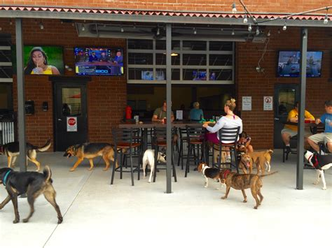 lucky bark and brew lucky bark brew is the ideal place to drink with your in