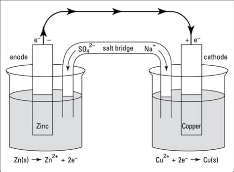 diagram of daniell cell electrochemical cells the daniell cell dummies
