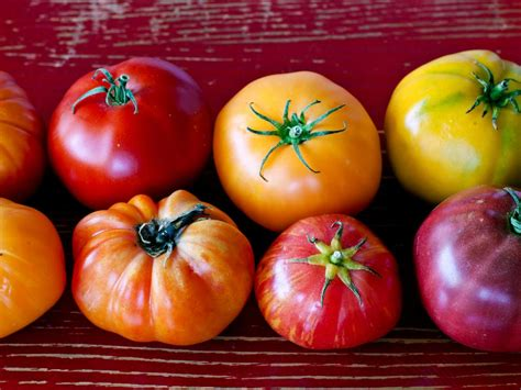 types  tomatoes      fn dish