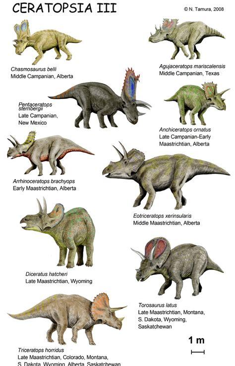 imagenes de animales no conocidos ceratopsia iii by ntamura on deviantart