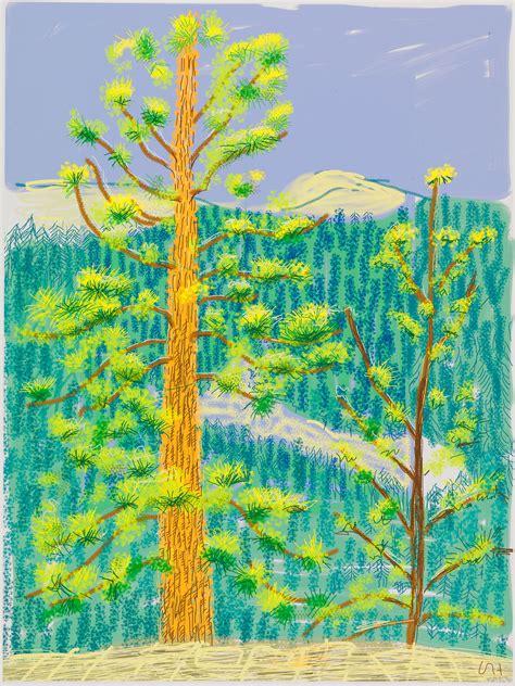 david hockney artist david hockney paints yosemite on his ipad travel leisure