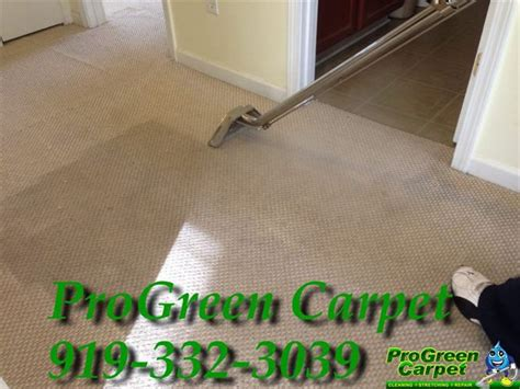 rug cleaning raleigh carpet cleaning services raleigh nc progreen carpet