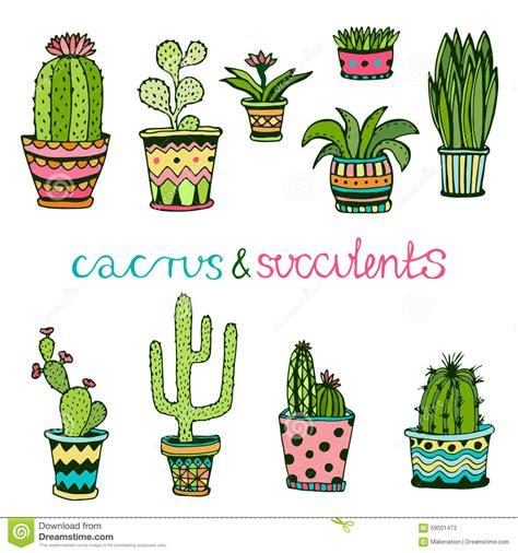 piante interne cactuse ed insieme disegnato a mano succulente