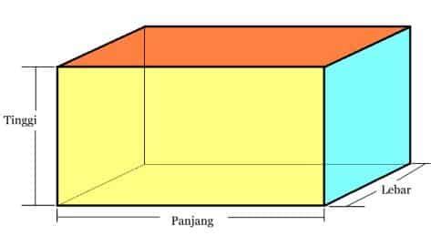 jaring jaring balok pengertian rumus ciri unsur