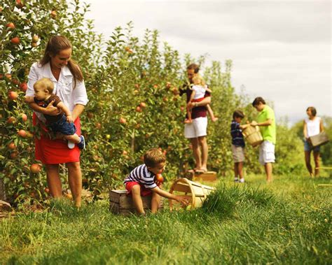 Am I Your Type (Of Holiday): Agritourism #TheTicket