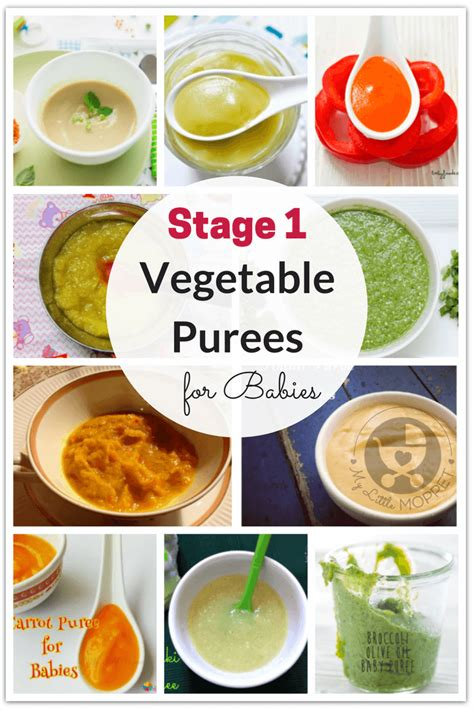 stage 1 vegetables 20 and easy vegetable purees for babies herbal