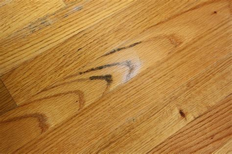 how to remove mold from house remove all stains com how to remove mold from wood