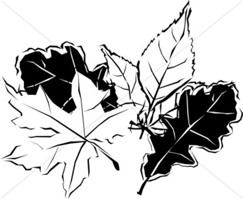 Fall Leaves Images Black And White Clipart
