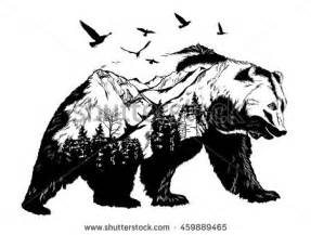 bear stock images royalty free images amp vectors
