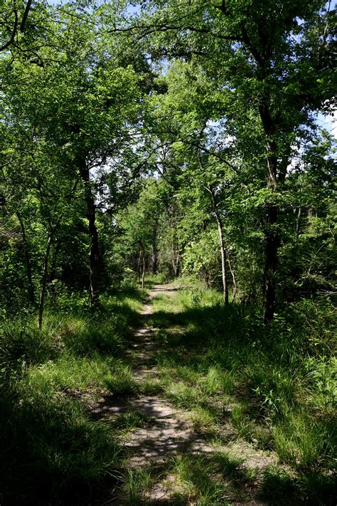 Of Houston Clear Lake Mba Reviews by Gc3p0d0 Uh Clear Lake Nature Trail Traditional Cache