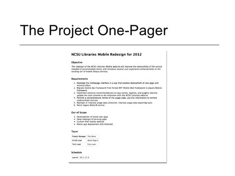Project Summary Template Hunecompany Com One Page Project Overview Template