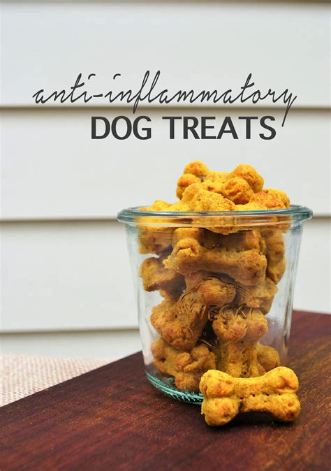 anti inflammatory for dogs anti inflammatory treats shellymade