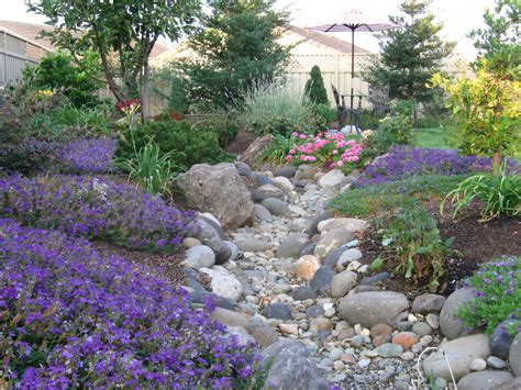 beautiful dry creek bed with low water plants designed by
