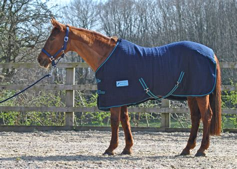 pony rugs 4 9 navy thermamax shetland sizes maxima equestrian quality pony shetland rugs at
