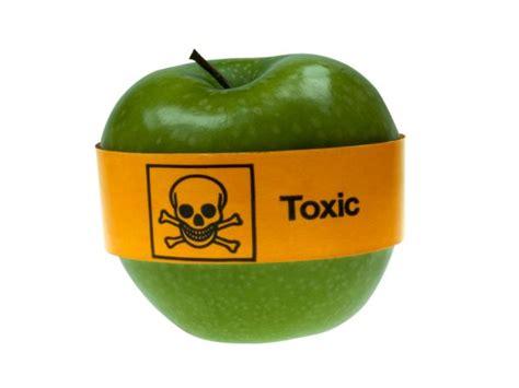 alimentos prohibidos para el c 10 alimentos prohibidos en el embarazo
