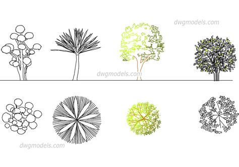 Construction Plan Symbols by Ornamental Trees Dwg Free Cad Blocks Download