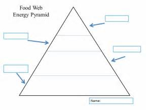 pyramid poem template food web energy pyramid k 5 computer lab technology