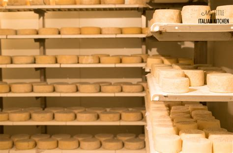 Shelf Of Goat Cheese by Goats Cheese In Italy Italian Kitchen