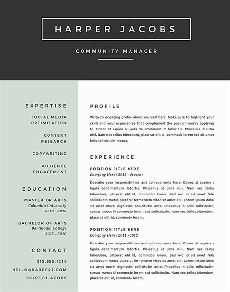 the best resume template 10 best ideas about best resume format on