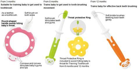 Richell Toothbrush 12m 4 richell toothbrush 8m 12m babyonline
