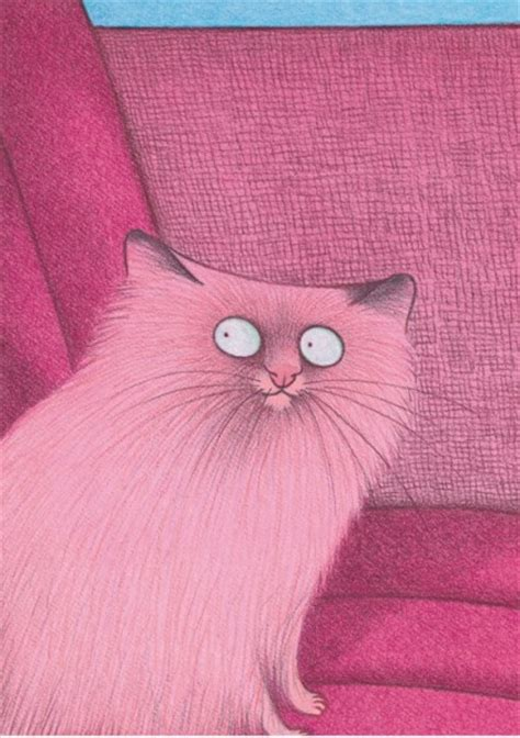 Cats Pink pink cat karsten teich make me smile