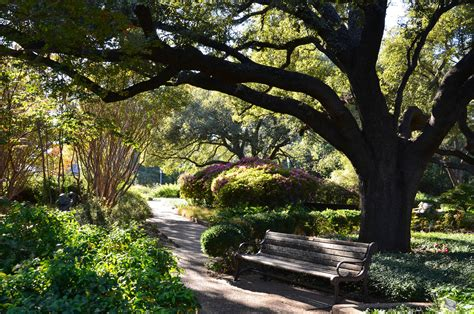 Fw Botanical Gardens Fort Worth Botanical Gardens Garden Inspirational Gardens 2